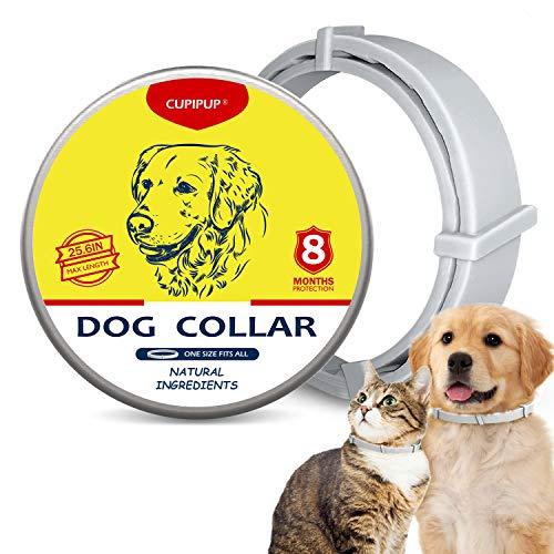 CUPIPUP Collar para perros y gatos